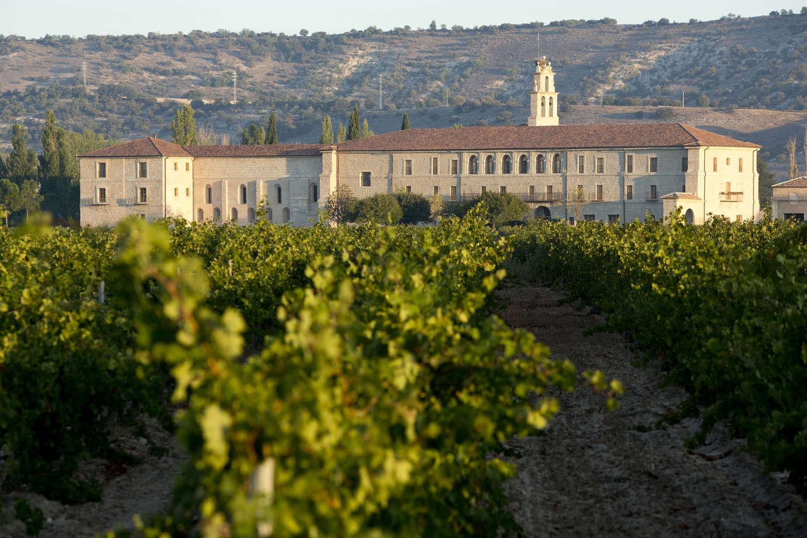 TREN CULTURA Y VINO D.O. RIBERA<br /><strong>Castillo y vino Ruta del vino de Ribera de Duero <strong class='extra_info_articulo'>- desde 260.00 €  </strong></strong>